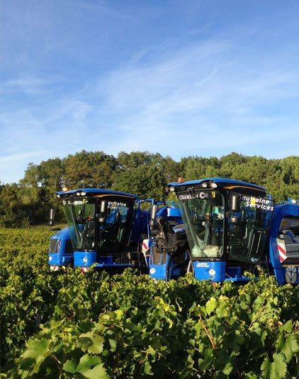 Prestations de <span>travaux viticoles, agricoles, pour les particuliers et les professionnels