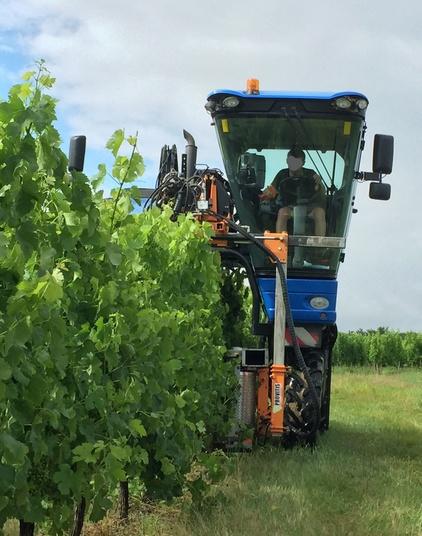 Travaux de vigne mécaniques